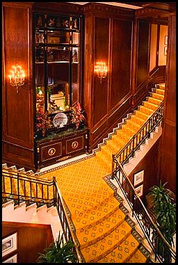 Grand Staircase-wedwire