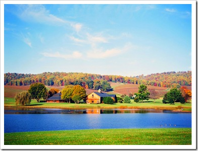 jason-keefer-photography-virginia-wedding-photographer-trump-vineyards-charlottesville_8